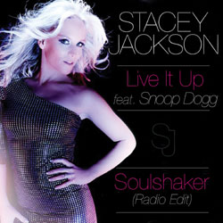 Live It Up featuring Snoop Dogg (Soulshaker Radio Edit)