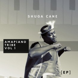 Amapiano Tribe Vol 1